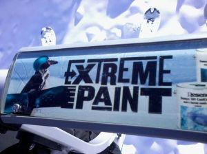 paint ski field